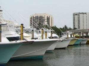 virginia fishing charter boats