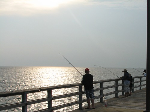 Virginia saltwater fishing fishing piers for Fishing piers in va