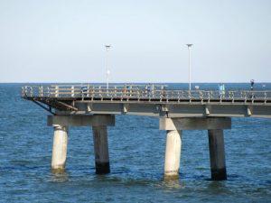 sea gull pier chesapeake bay bridge tunnel